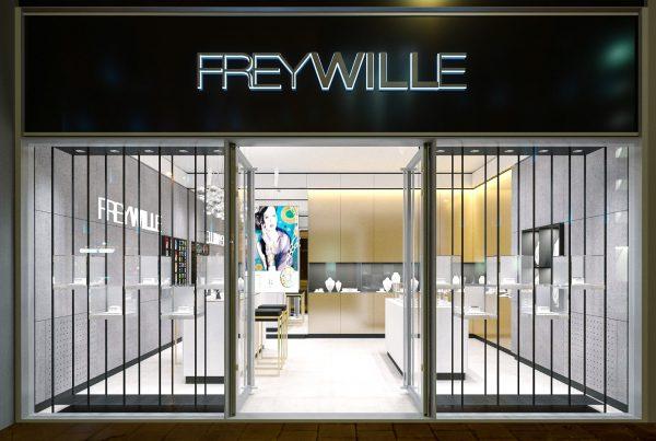 Proiect amenajare interioare Freywille