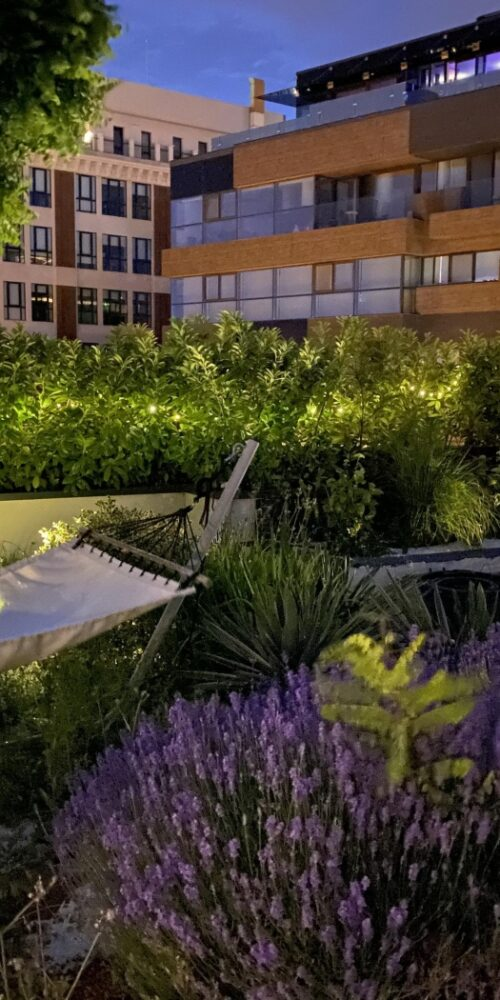 rooftop floreasca
